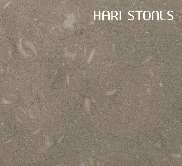 Limestone Fossilized Tiles Distributor