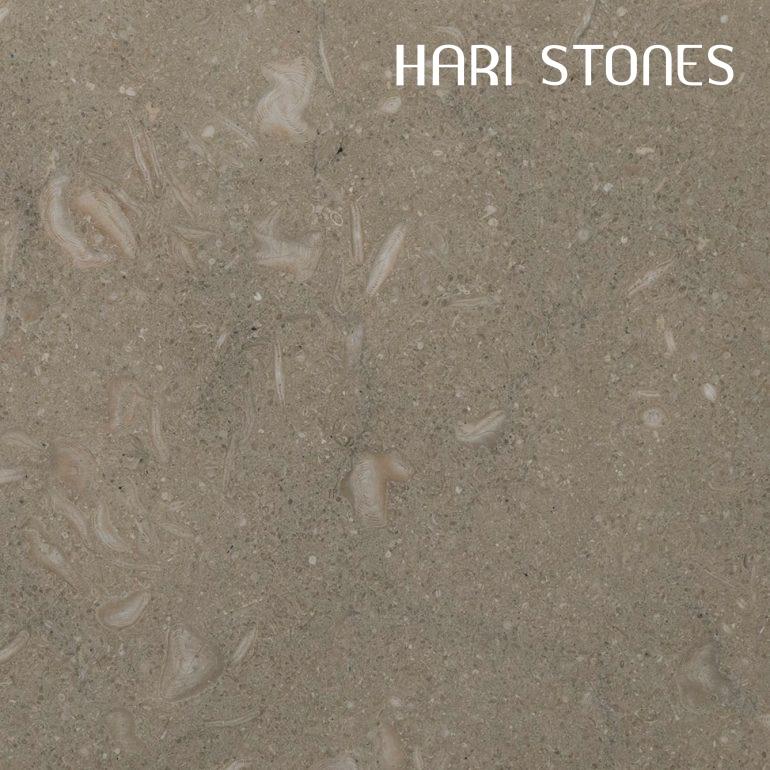 Limestone Fossilized Tiles Distributor