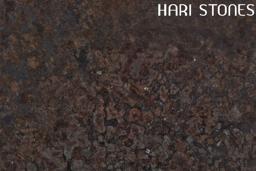 Fossil Brown Slabs Distributors