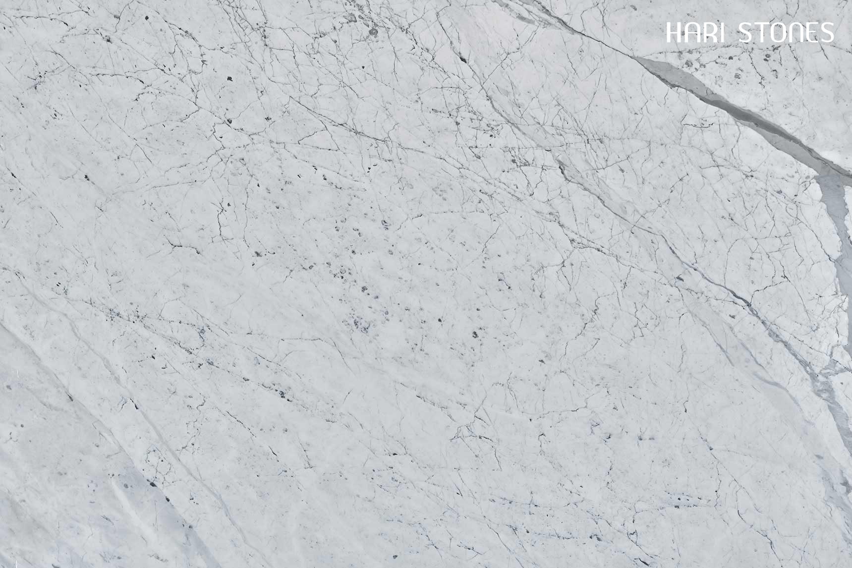 Bianco Statuario Marble Slabs Suppliers