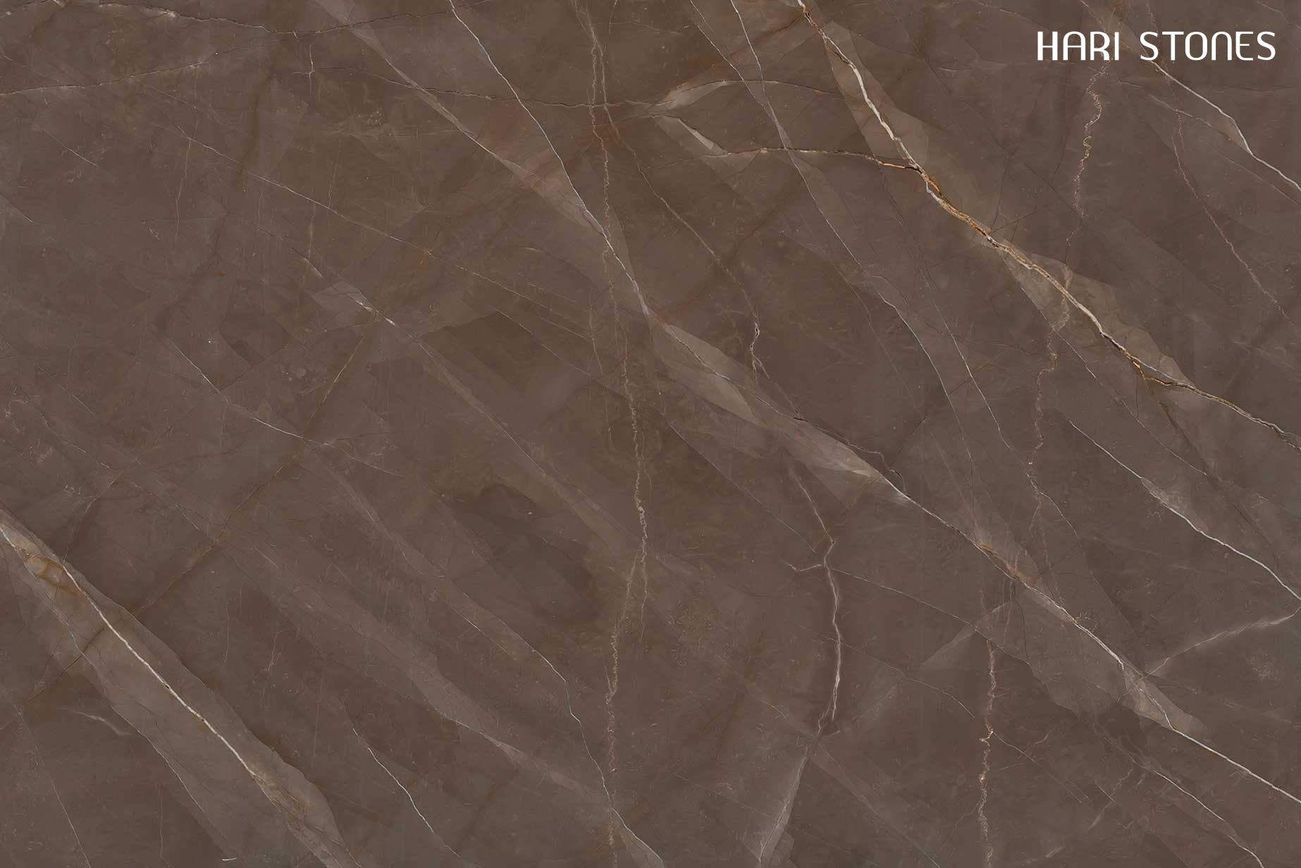 Bronze Amani Marble Supplier and Distributor