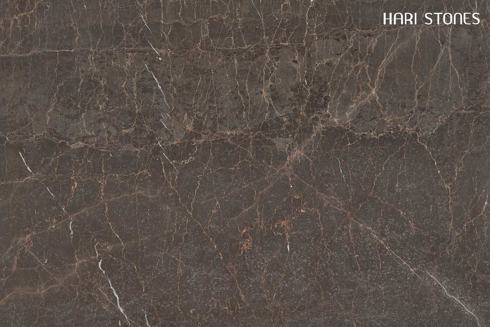 Brown Stone Marble Slabs Suppliers