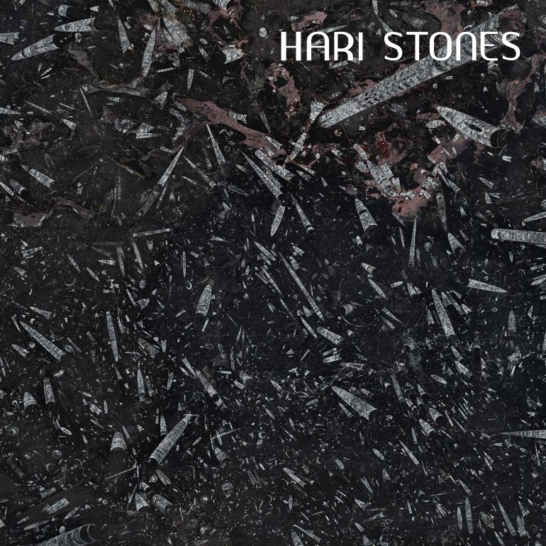 Fossil Black Marble Slabs Suppliers