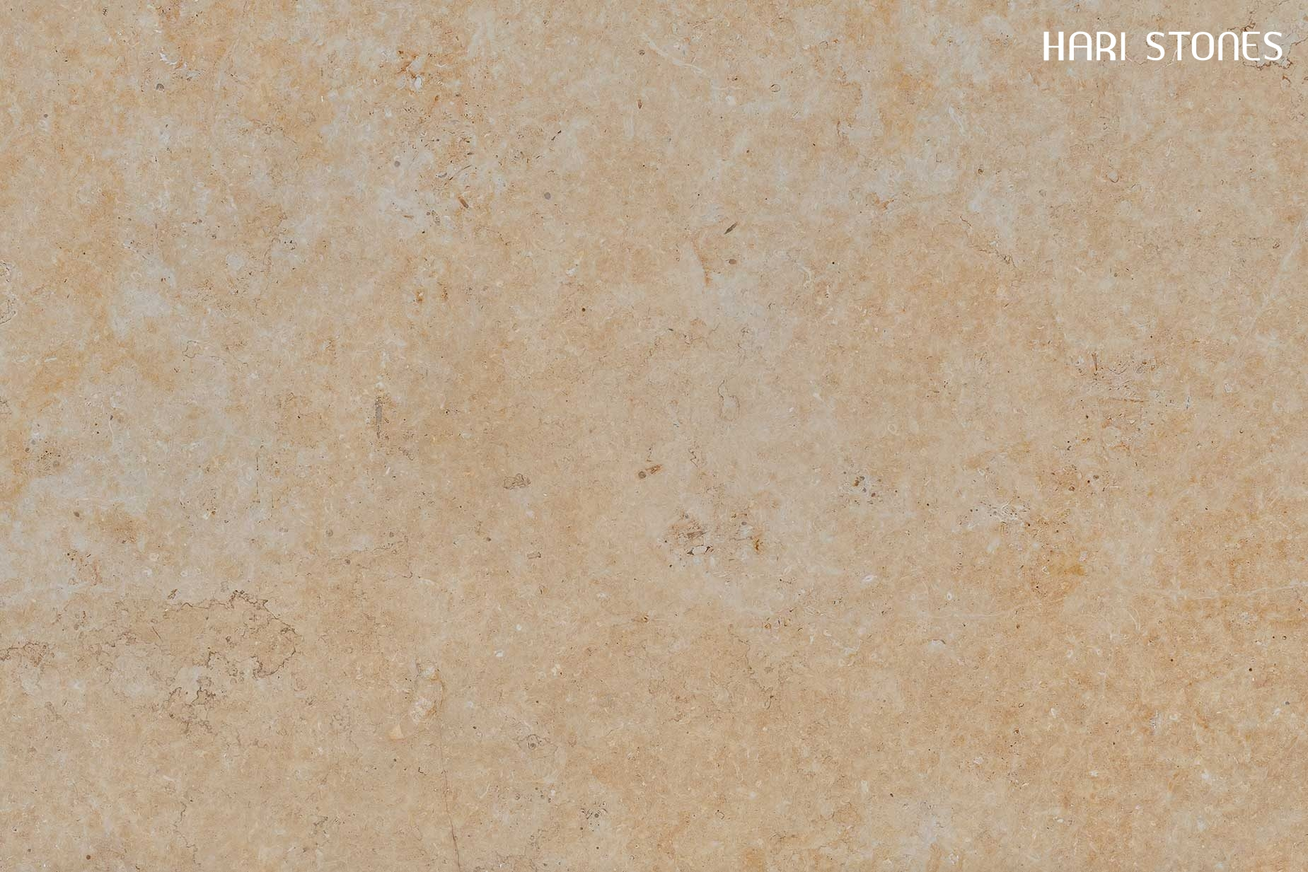 Jerusalem Gold Polished Limestone Slab Suppliers