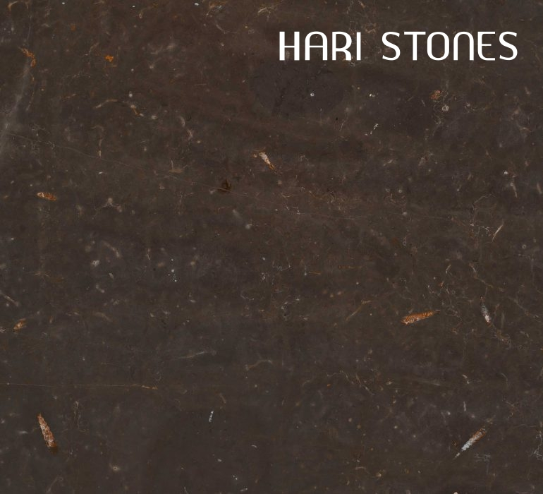 Jurassic Brown Marble Slabs Distributors