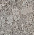 New Alaska White Granite Slabs Distributors