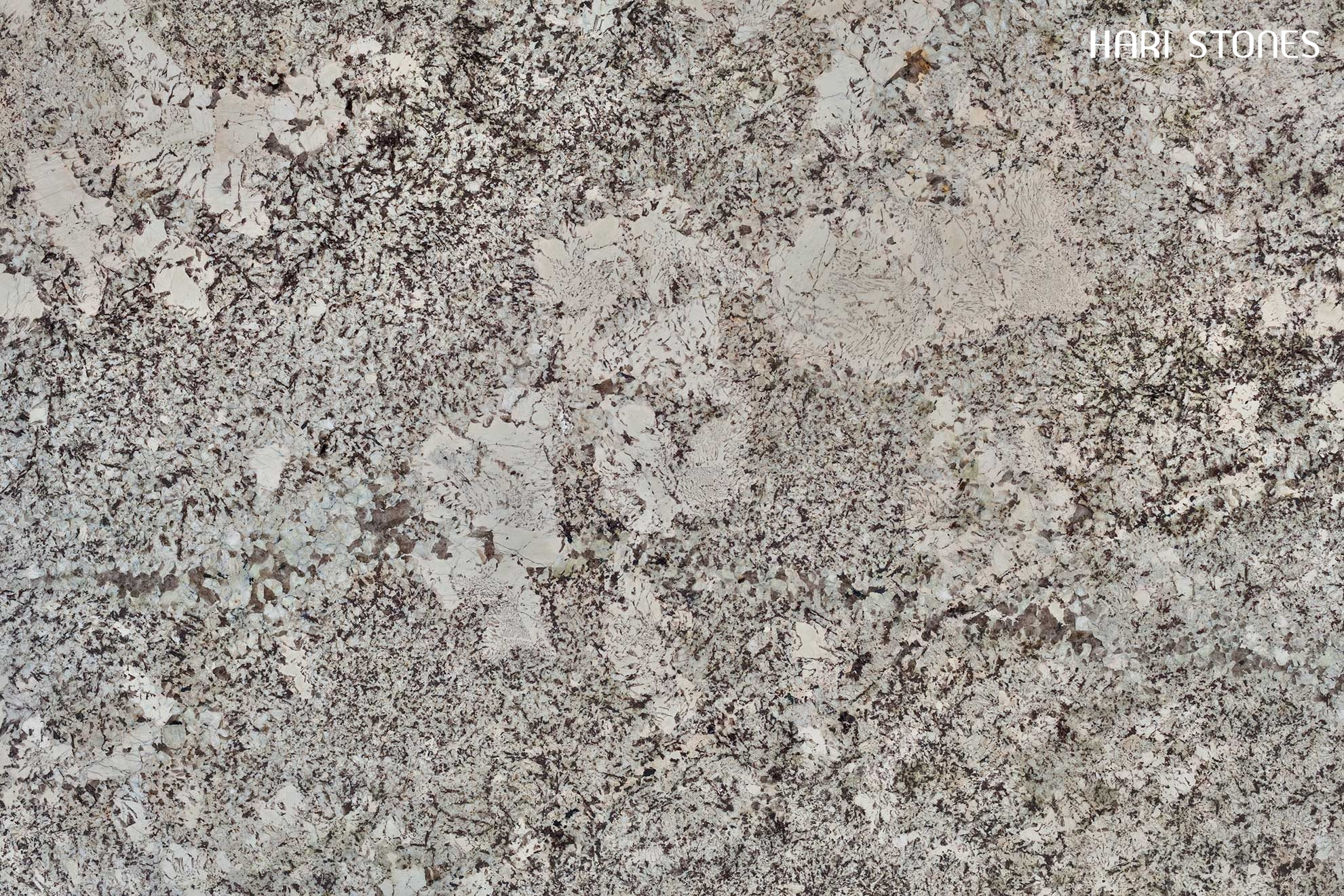 New Alaska White Granite Slabs Distributors