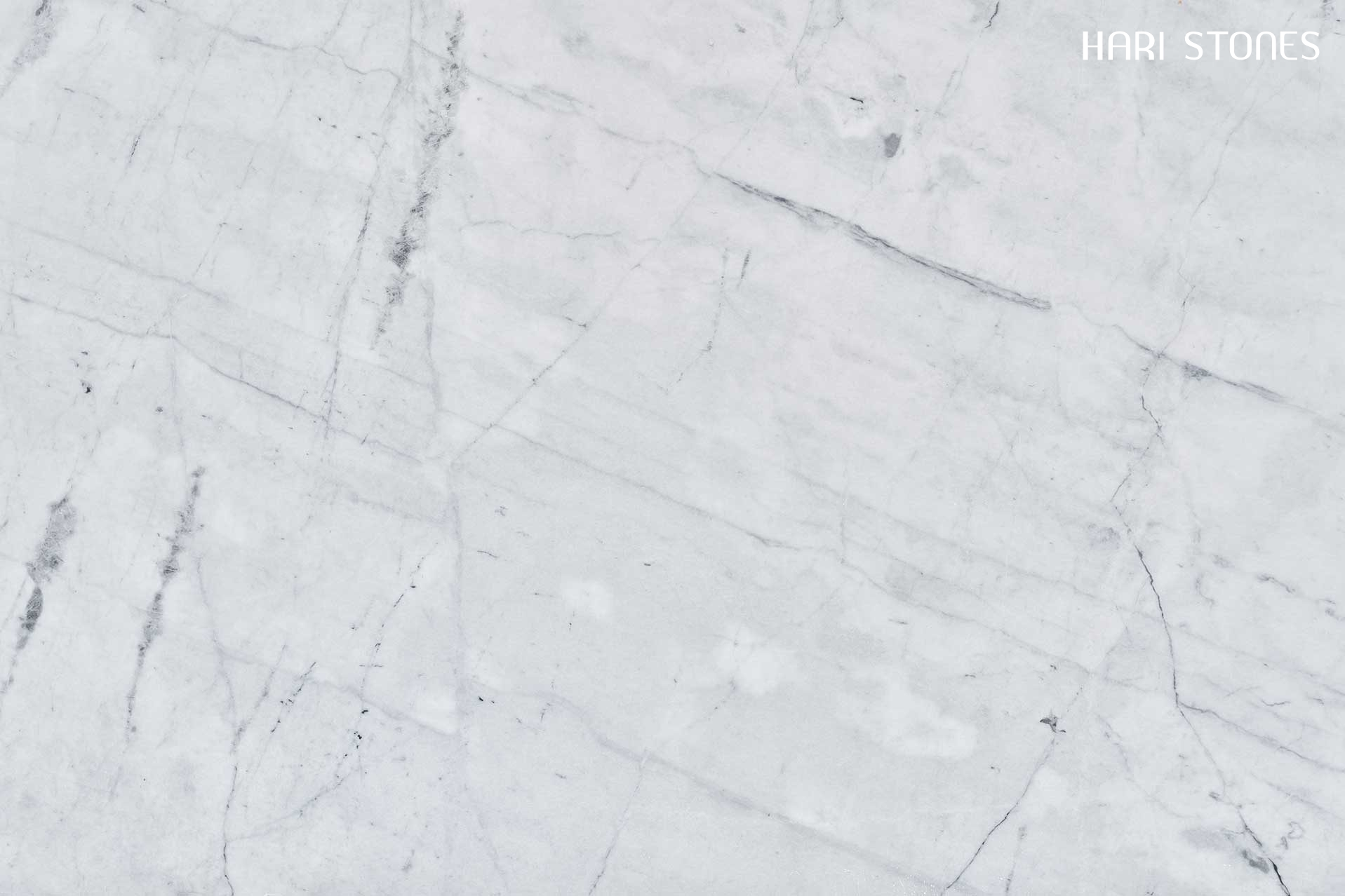 Frozen Grey Slabs Suppliers