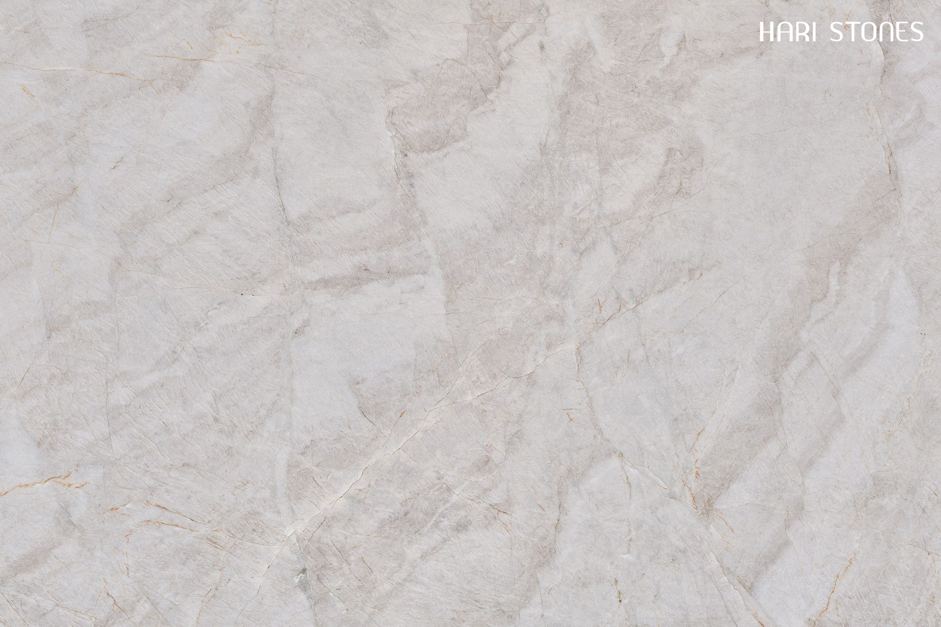 Naica Quartzite Slabs Distributors