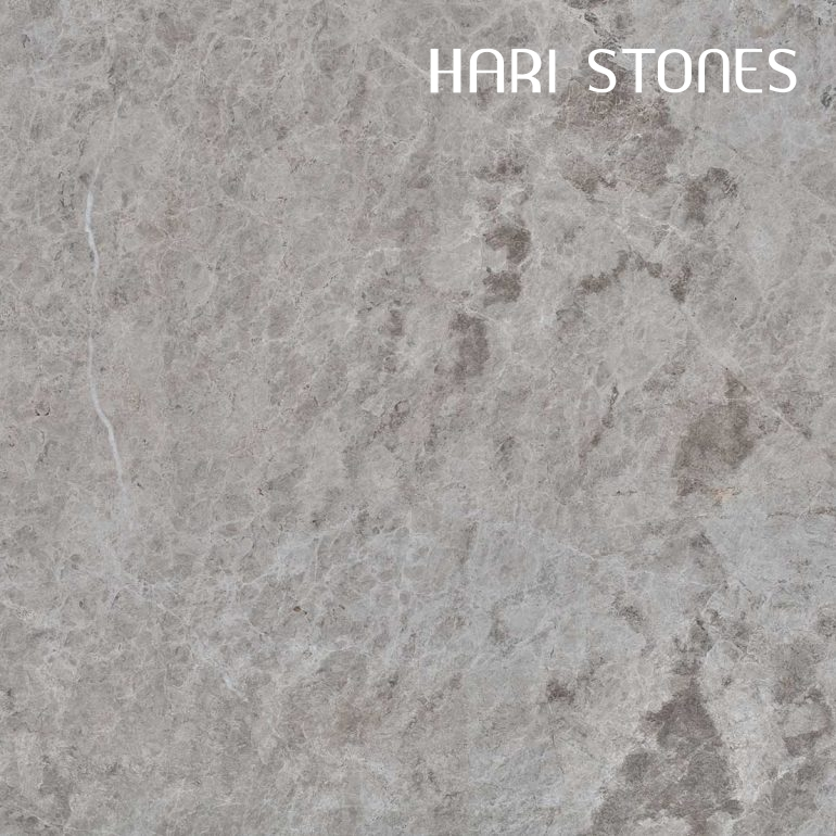 Silver Shadow Honed Tiles Supplier