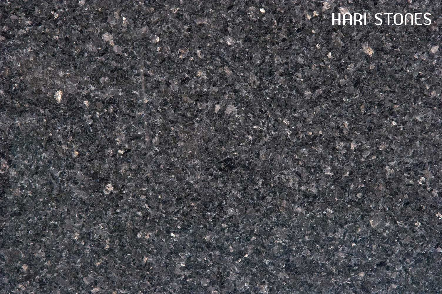 Golden Black Granite Slabs Suppliers