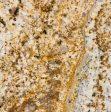 Golden Persa Granite Slabs Suppliers