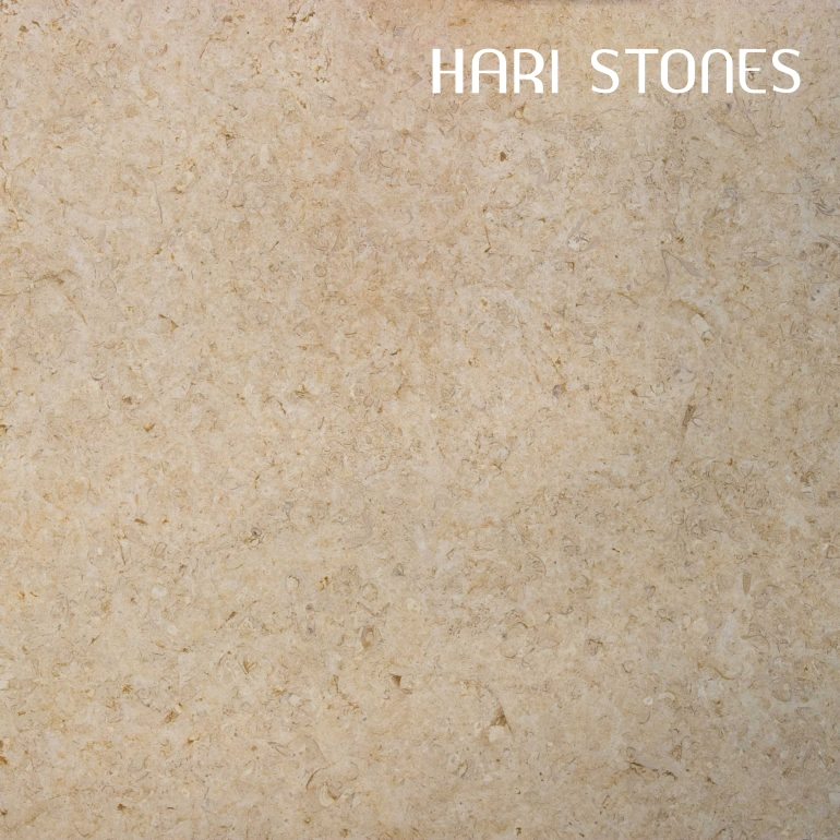 Lias Beige Honed