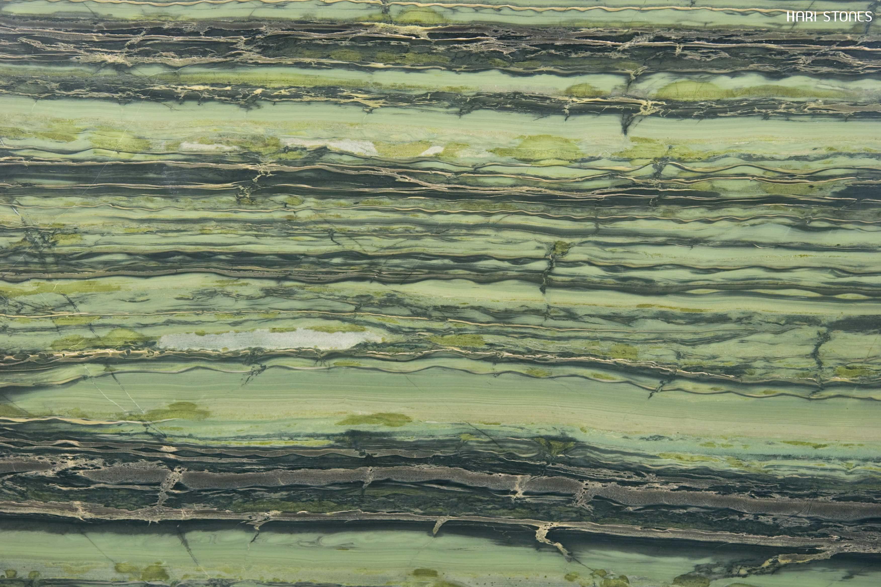 Verde Bamboo