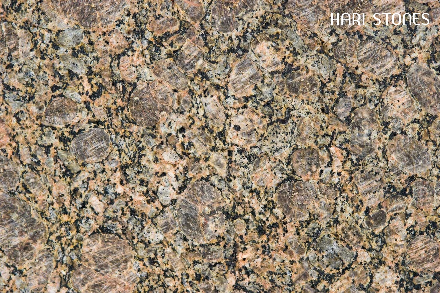 Sucury Brown Granite Slabs Suppliers