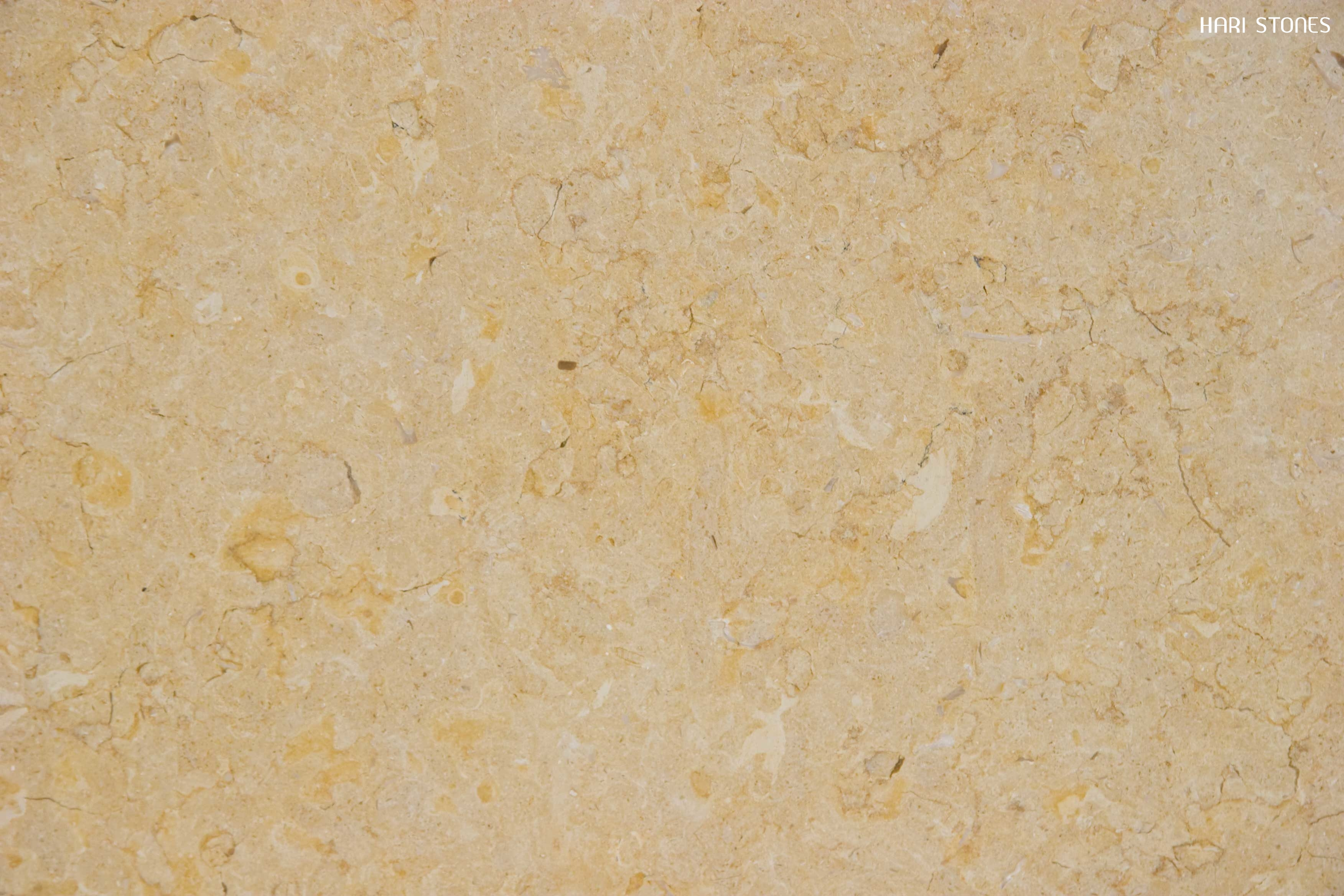 Jerusalem Gold Polished Limestone Tile Distributors