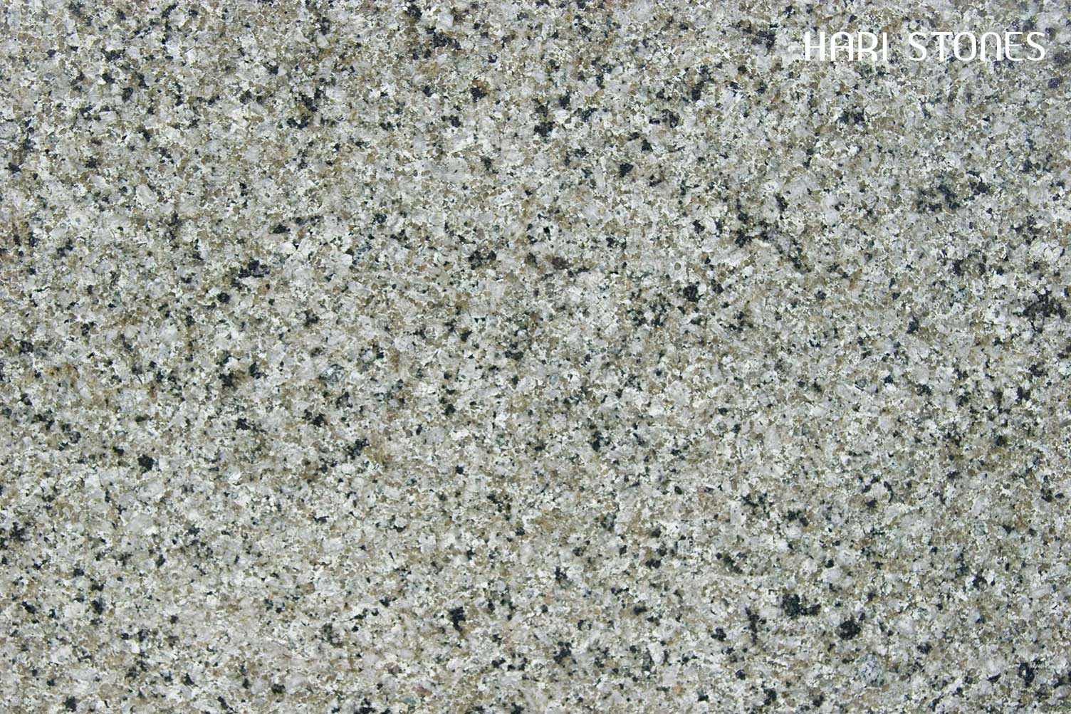 Verde Fashion Granite Slabs Suppliers