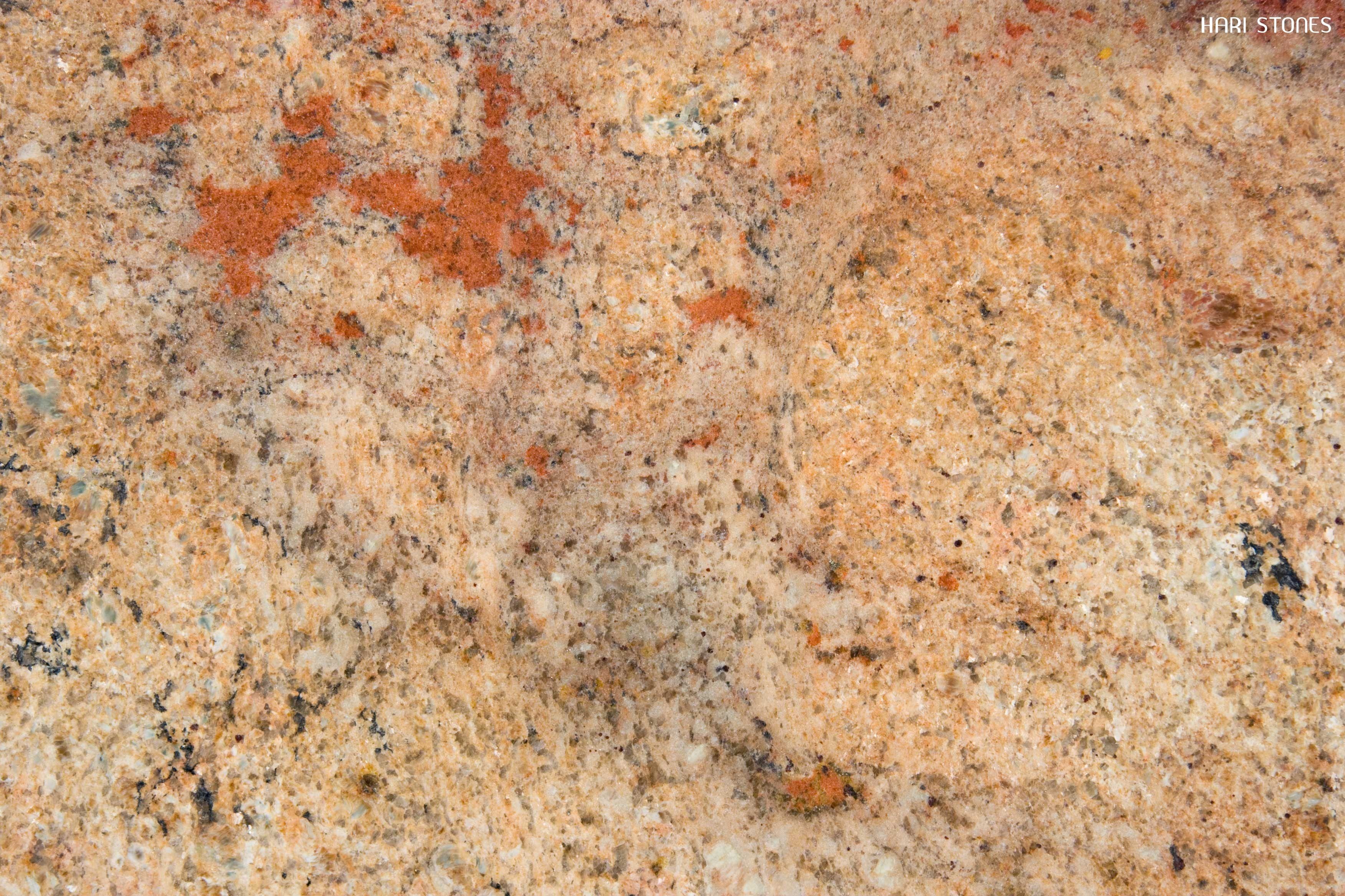 Golden Taupe Granite Slabs Suppliers