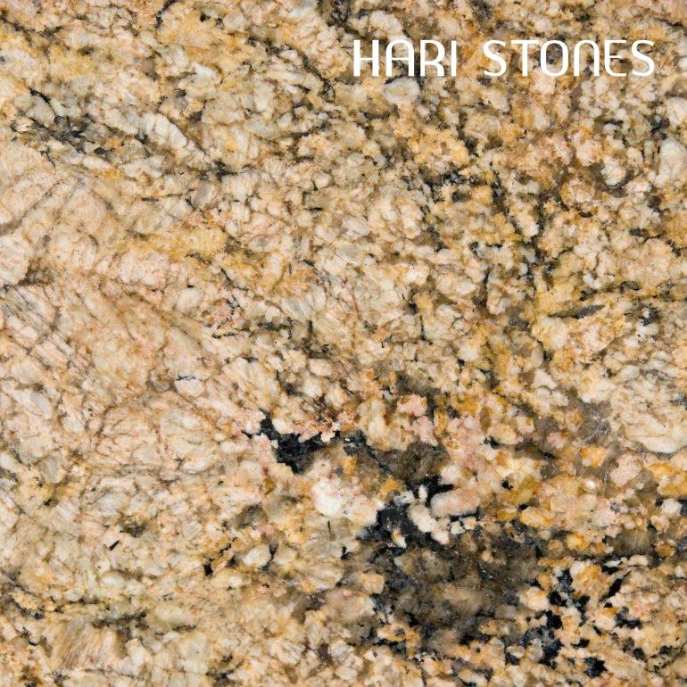 Golden Fantasy Granite Slabs Suppliers