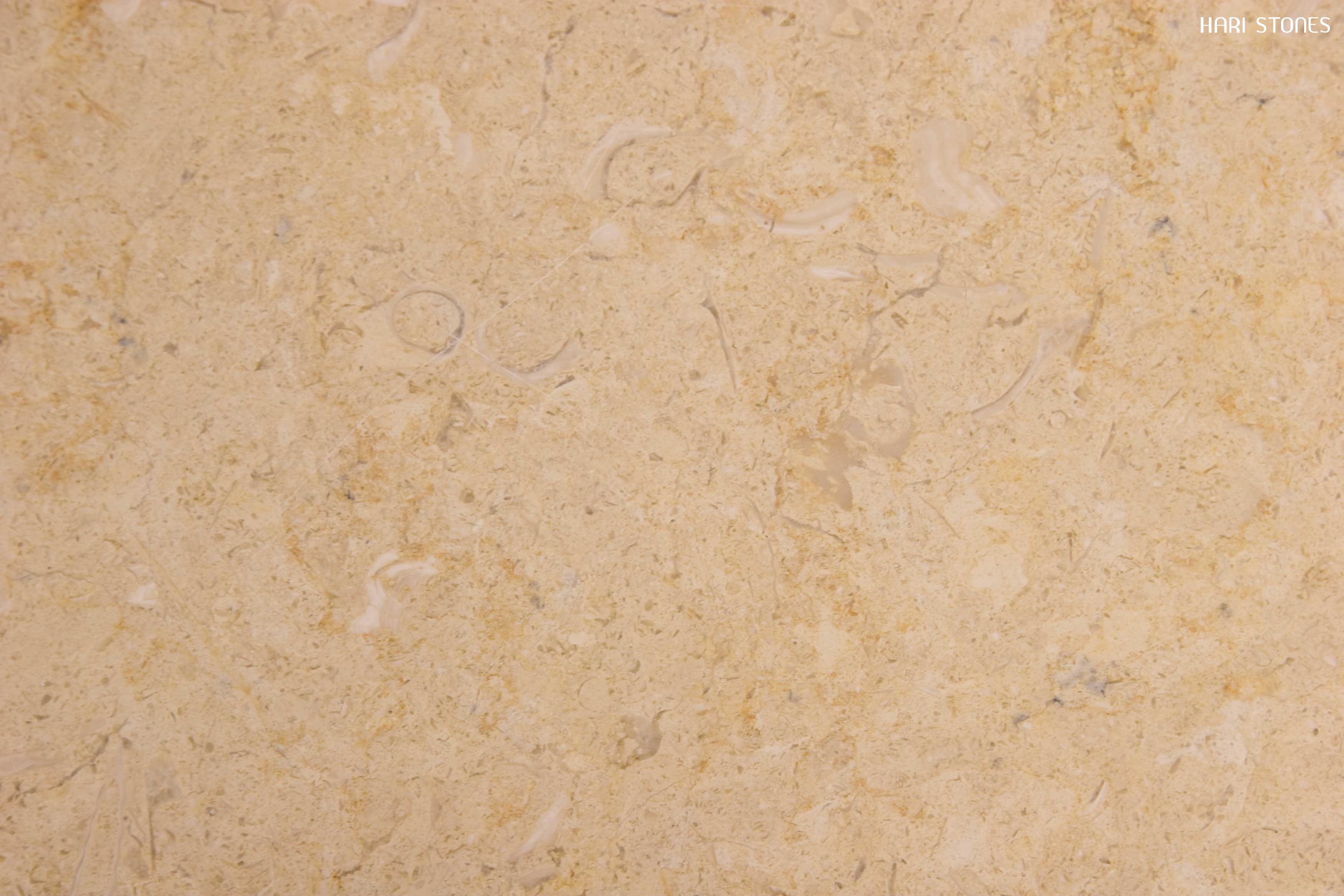 Lias Beige Polished Limestone Tiles Suppliers and Distributors