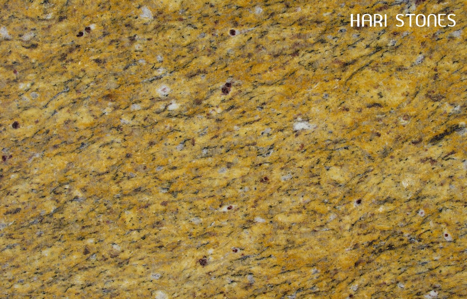 Juprana Topazio Granite Slabs Distributors
