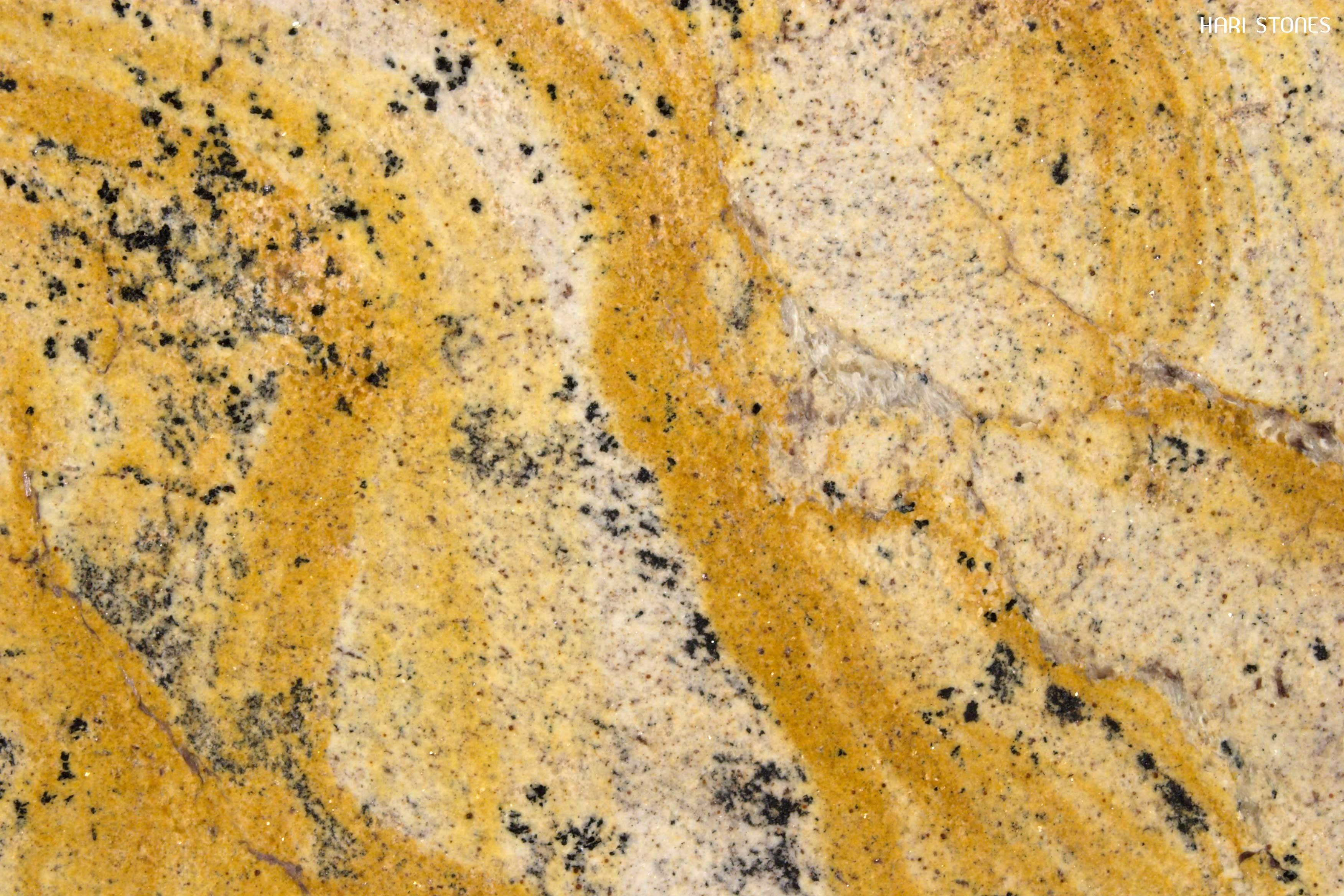Giallo Medusa Granite Slabs Distributors
