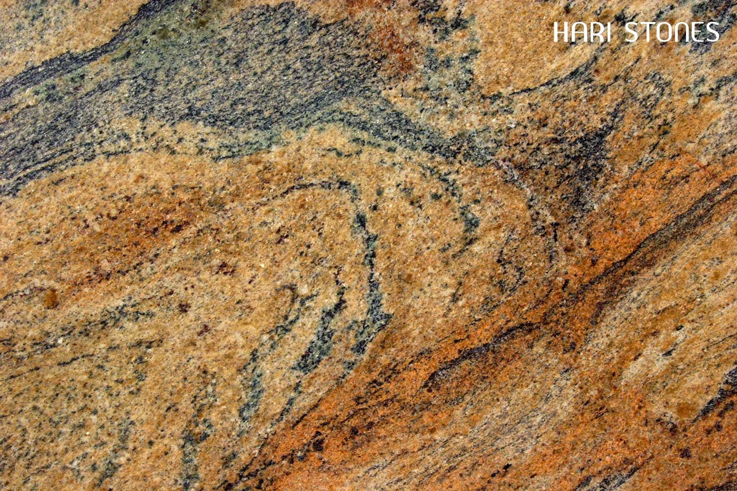 Tropical Gold Granite Slabs Distributors