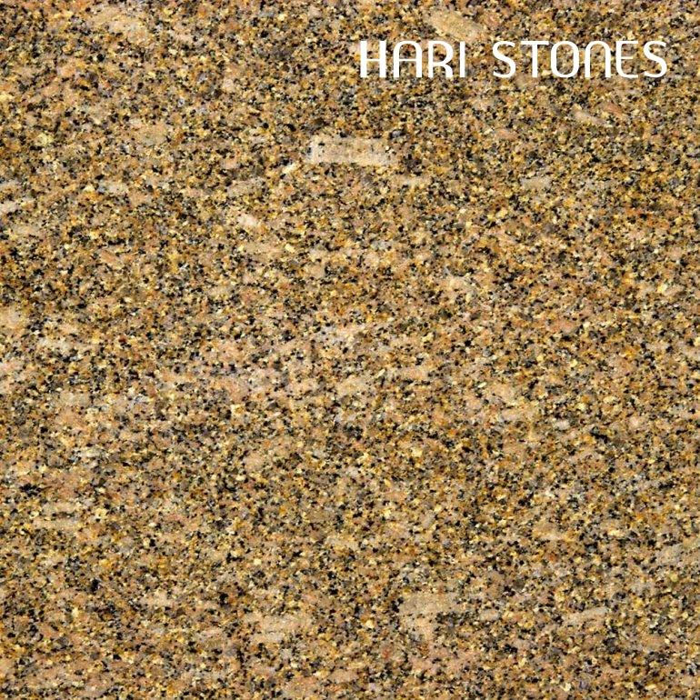 Carioca Gold Granite Slabs Supplier