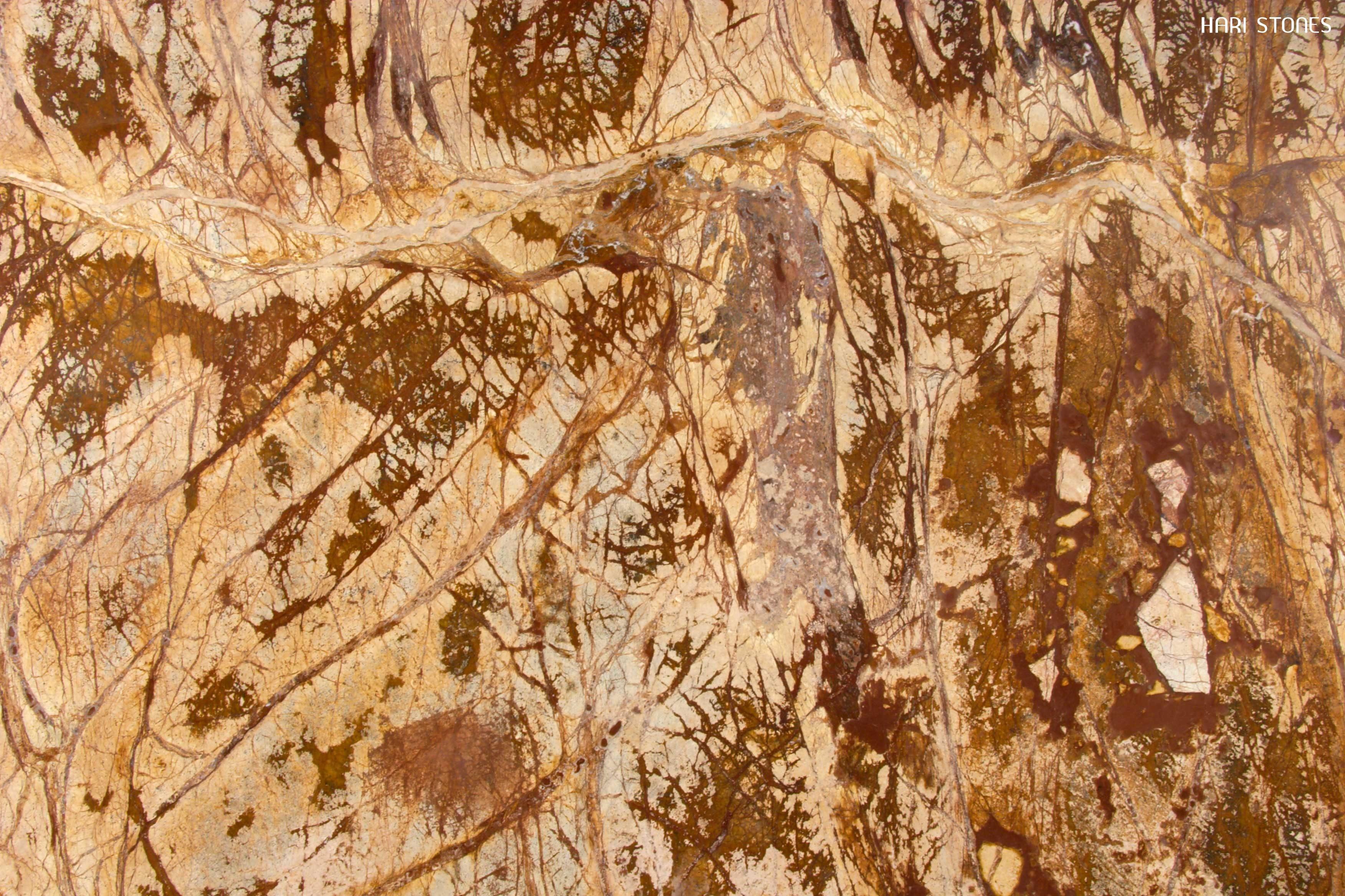 Rain Forest Brown Honed Supplier