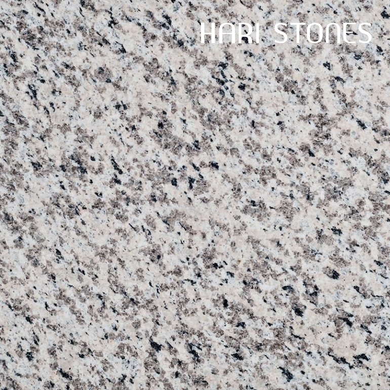 Luna Pearl Granite Tiles Suppliers and Distributors