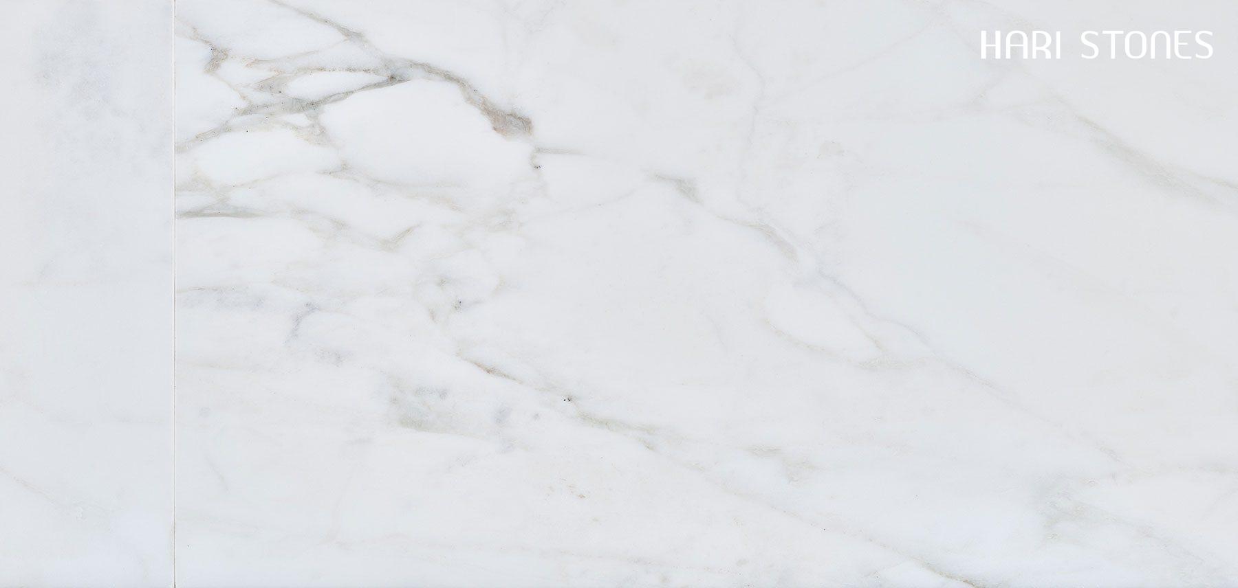 Calacata Michelangelo Honed Tiles Distributors