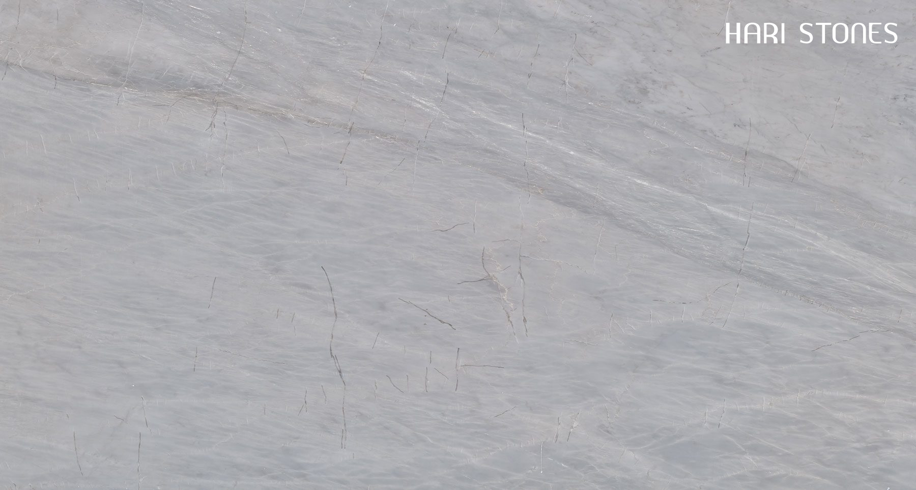 Earth Grey Marble Tiles Suppliers