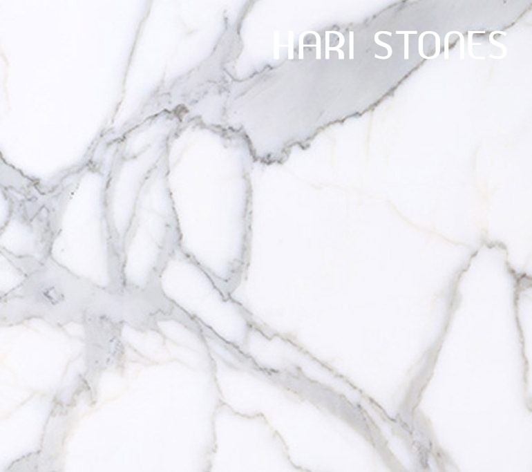 Kalos Bianco Slabs Distributors