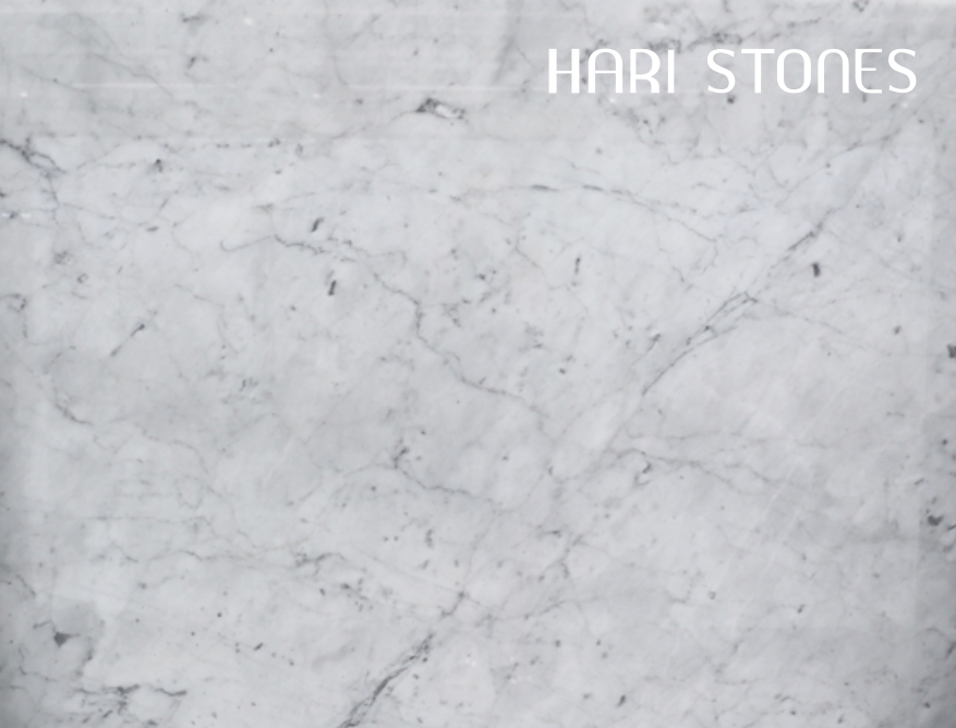 Marble Bianco Gioia Venatino