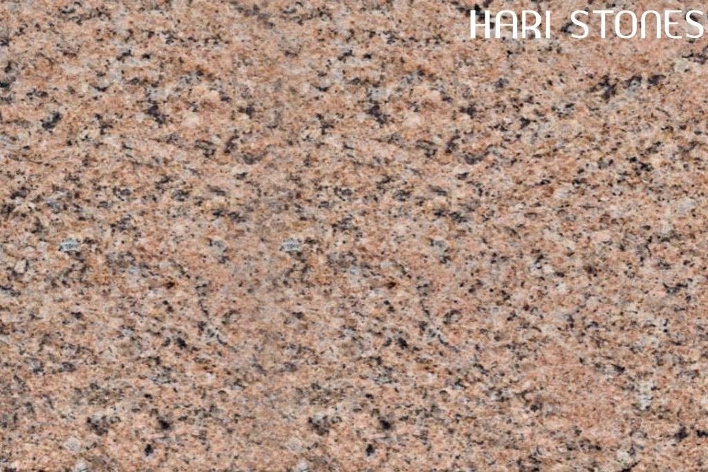 Giallo Veneziano Granite Tile Suppliers