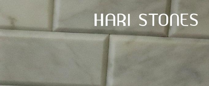 Mosaic Marble Bianco Carrara M19 Distributor