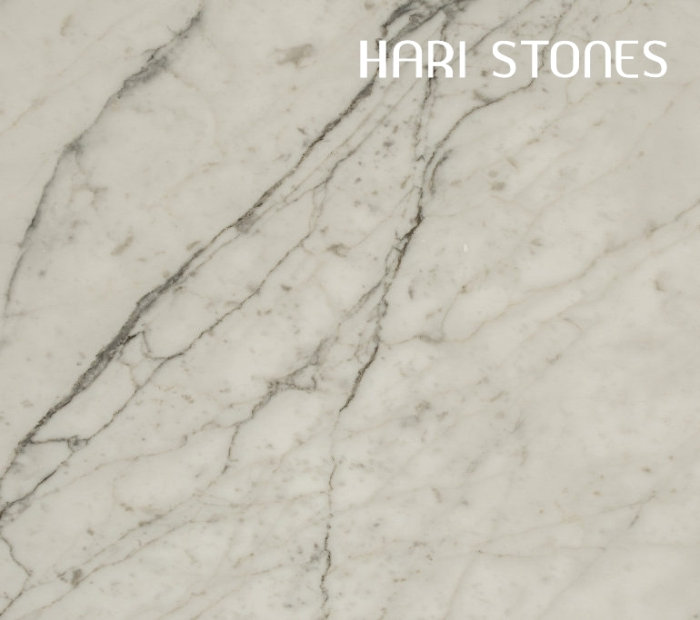 Marble Bianco Statuario - Honed Slabs Suppliers