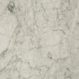 Marble Bianco Statuario Special Batch