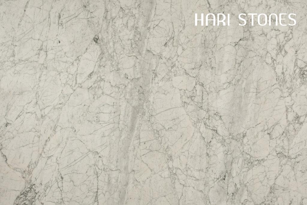 Marble Bianco Statuario Special Batch