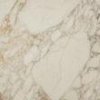 Marble Calacatta Oro Marble Distributor