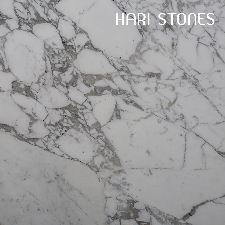 Arabescato Vagli Marble Slabs Suppliers