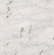 Bianco Carrara Gioia Marble